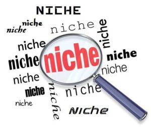 selecting the niche